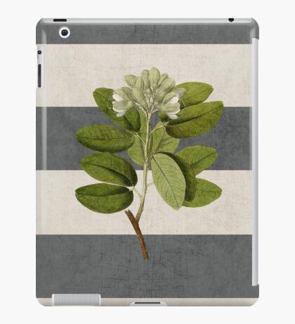 botanical stripes 5 iPad Case/Skin