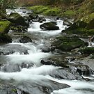 Sweet Creek 5 by CarrieAnn