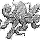Octopus by Phaedrus Byskou