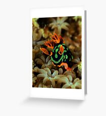 Nembrotha Nudibranch Greeting Card