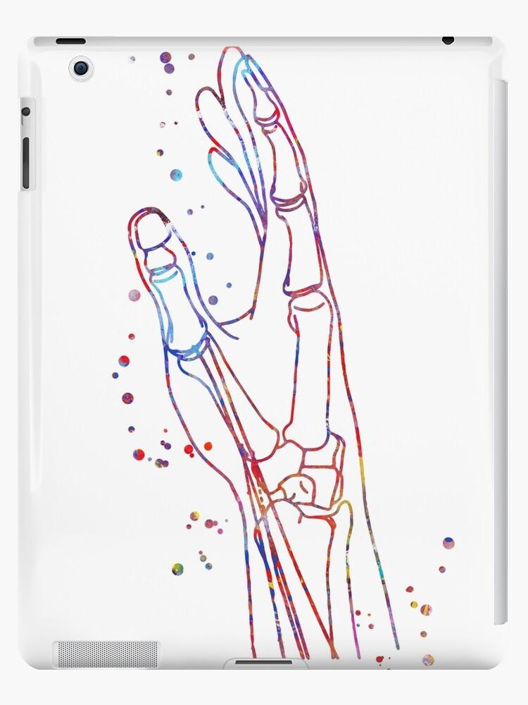 Hand Hand Anatomy Anatomy Watercolor Hand Hand Art Hand Bones