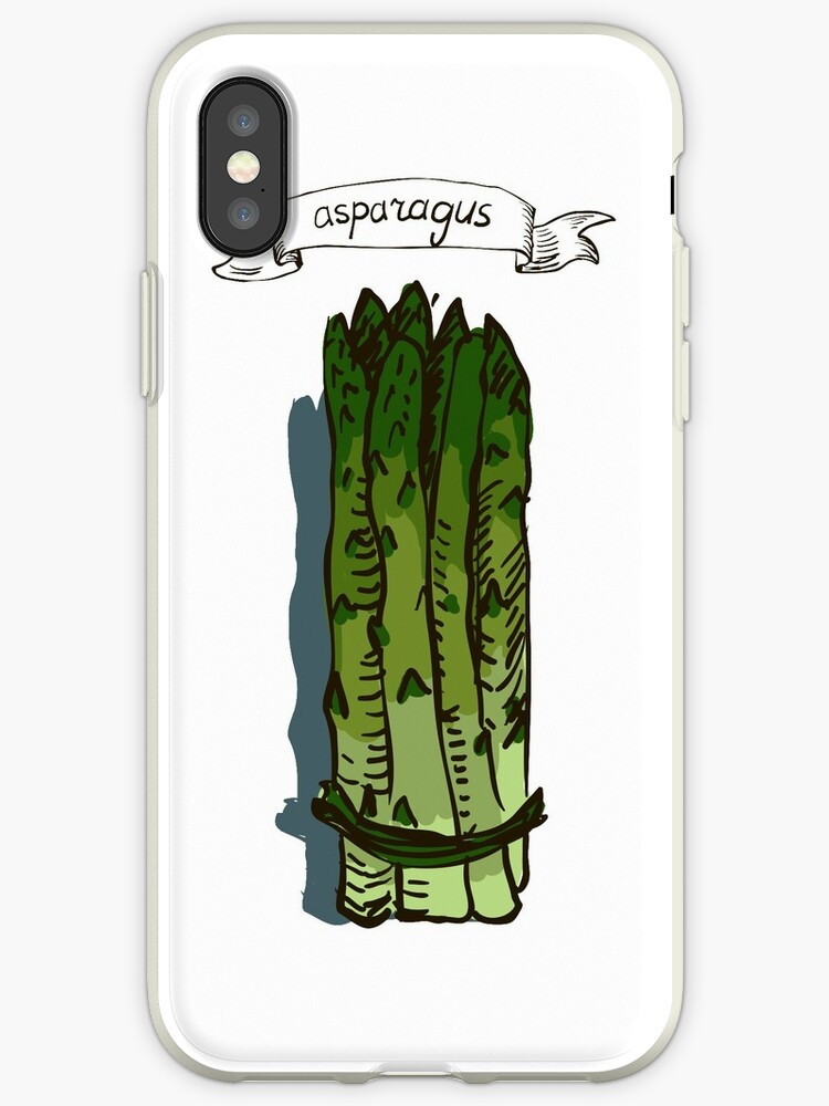 watercolor hand drawn vintage illustration of asparagus by OlgaBerlet