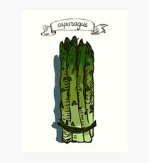 watercolor hand drawn vintage illustration of asparagus Art Print