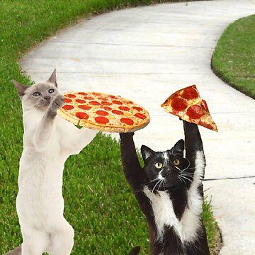 pizza pal kats by taco-elgato
