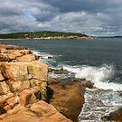 Acadia National Park, Maine, USA by Daniel H Chui