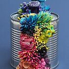 Rainbow Growth on a Tin Can by Stephanie KILGAST