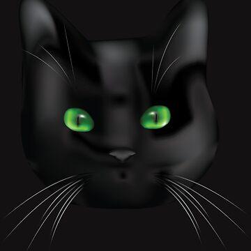 Black Cat by soulwhispherer