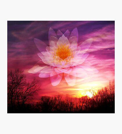 Rising Lotus Setting Sun Photographic Print