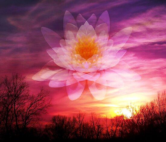 Rising Lotus Setting Sun by Elizabeth Burton