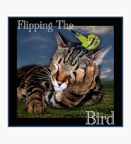 Flipping The Bird Photographic Print
