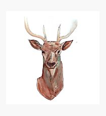 Prongs Two Photographic Print