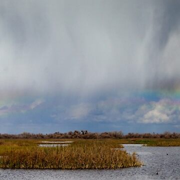 Rain Showers and Rainbow by Osso