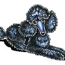 Black Miniature Poodle Lay Pretty by offleashart