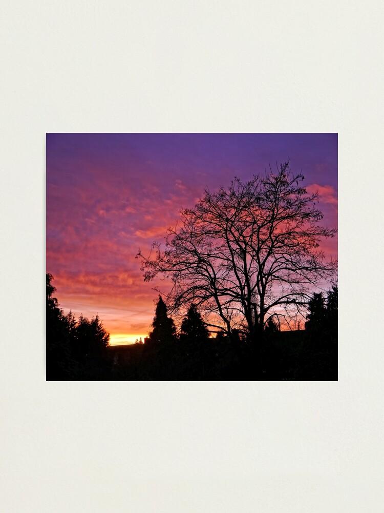 Alternate view of Purple Sunset Photographic Print
