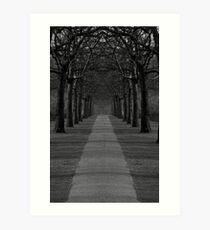 London Trees Art Print