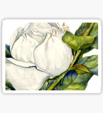 Magnolia Bloom with Leaves Sticker