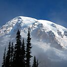 Mt Rainier by Barbara Burkhardt