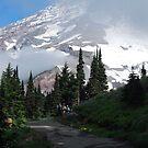 Hike on a Mountain by Barbara Burkhardt