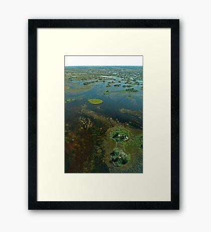 Okavango Delta aerial view 3 Framed Print