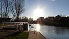 Late afternoon beside a canal by CiaoBella