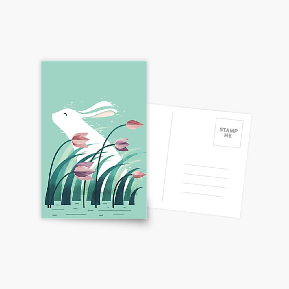 Rabbit, Resting Postcard