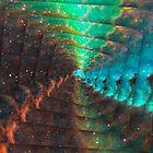 «Nebulosa anidada» de elevens