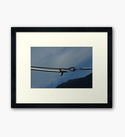 pike pole Framed Print