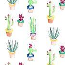 «Watercolor Cactus» de pitaya-roja