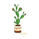 The Flowering Cactus by BealaDesigns