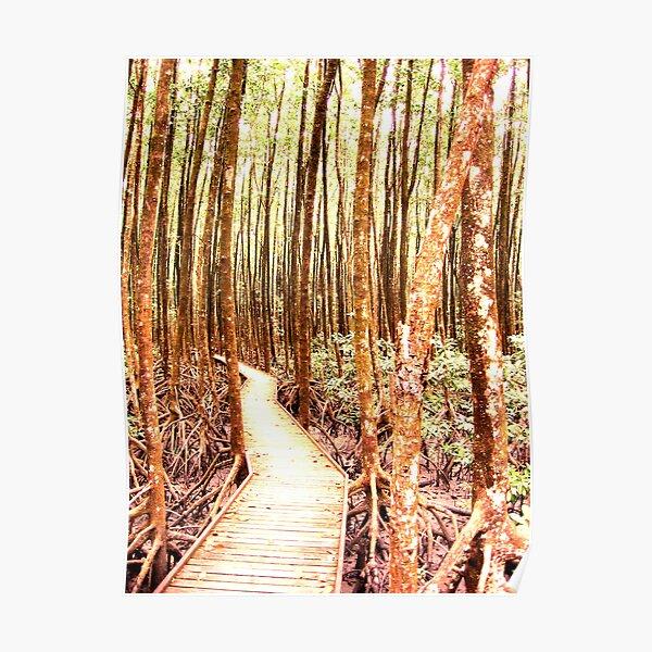Mangrove Maze Poster