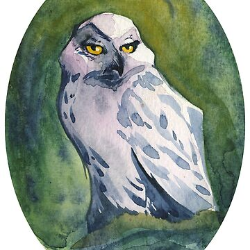 Superb Owl by LauraGarabedian