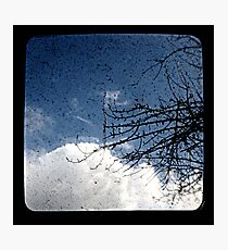 Pear Tree And Cloud Ttv Photographic Print