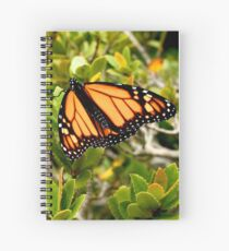 Butterfly in Spring Spiral Notebook