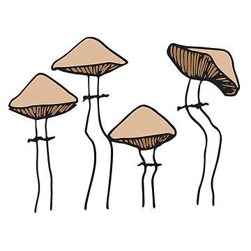 Group Of Mushrooms | Nature Beauty by SaTara