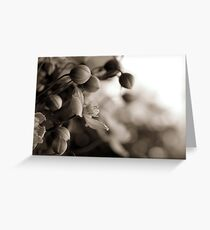 growing strong with love  Greeting Card