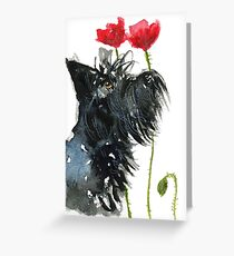 Scottie Dog 'Poppies' Greeting Card