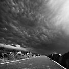 Road Less Travelled by Gareth Bowell