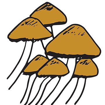 Mushrooms In The Wild | Nature, Food, Art by SaTara