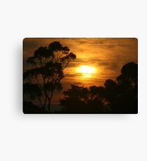 Windscreen sunrise  Canvas Print