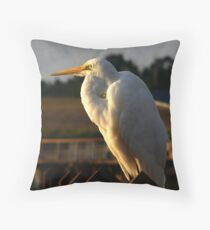 Intermediate Egret Throw Pillow