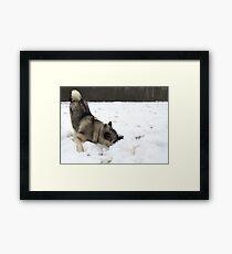Cold Fluffy Pillow  Framed Print