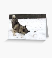 Cold Fluffy Pillow  Greeting Card