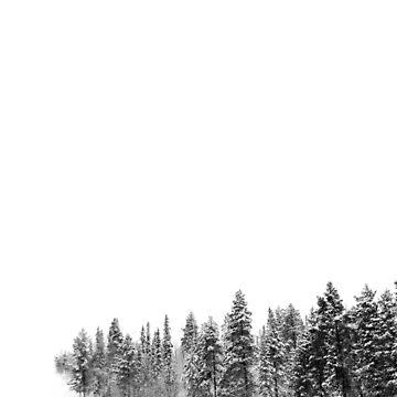 Snowy Woods by iamsla
