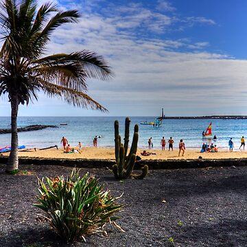 Las Cucharas Beach by tomg