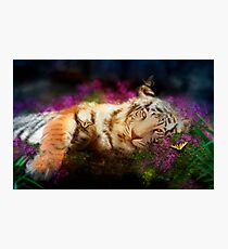 Tiger, Tiger Photographic Print