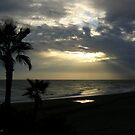 Sunset by Ingrid Funk