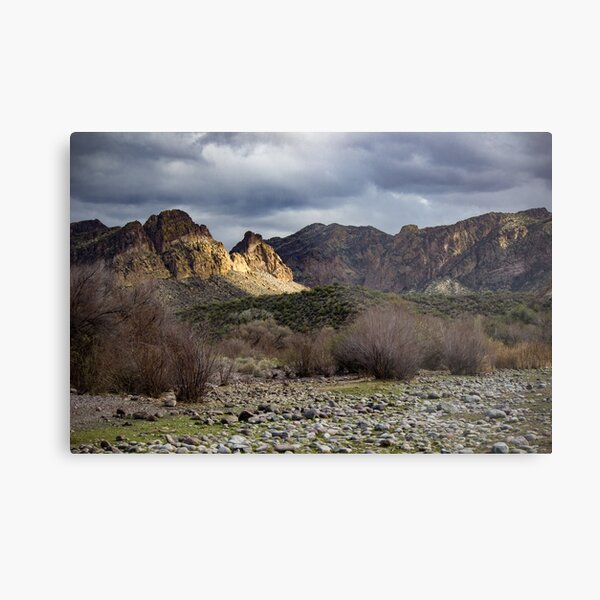 Salt River - Wild Horse exploration Metal Print