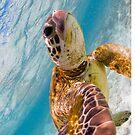 Sea turtle selfie - iPad cases and skins by Kara Murphy