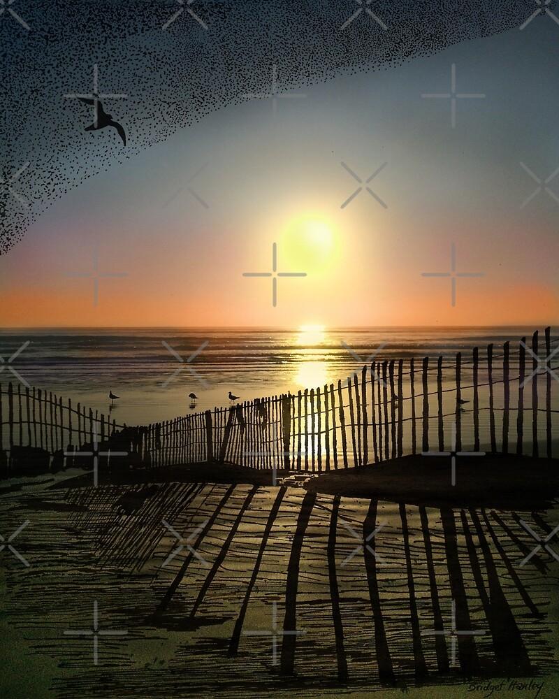 Dawn of Freedom by dreamingcat