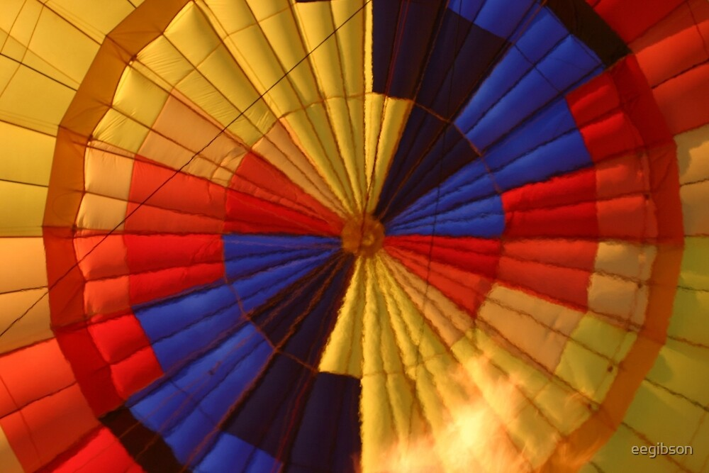 View inside of Hot Air Balloon by eegibson
